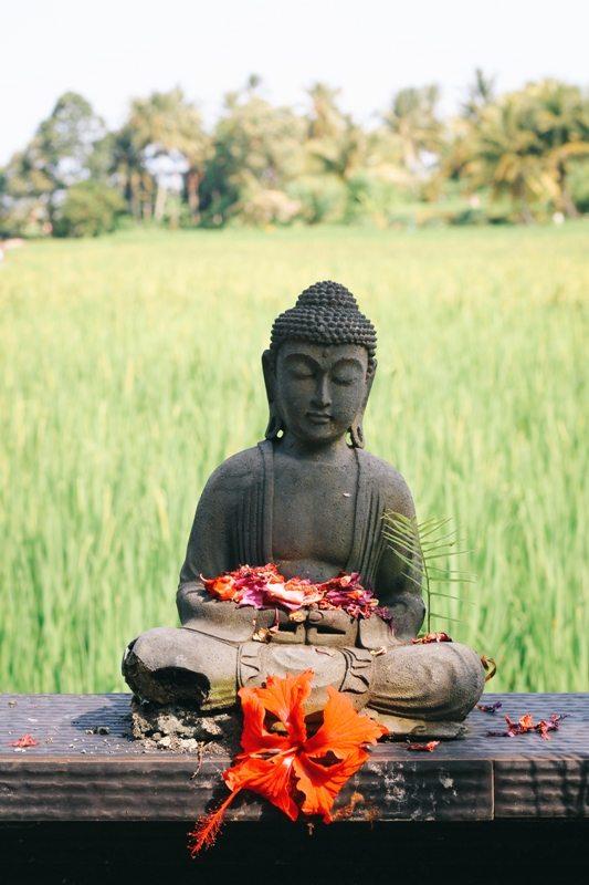 Ubud Tipps: Hier findet man das spirituelle Bali an jeder Ecke