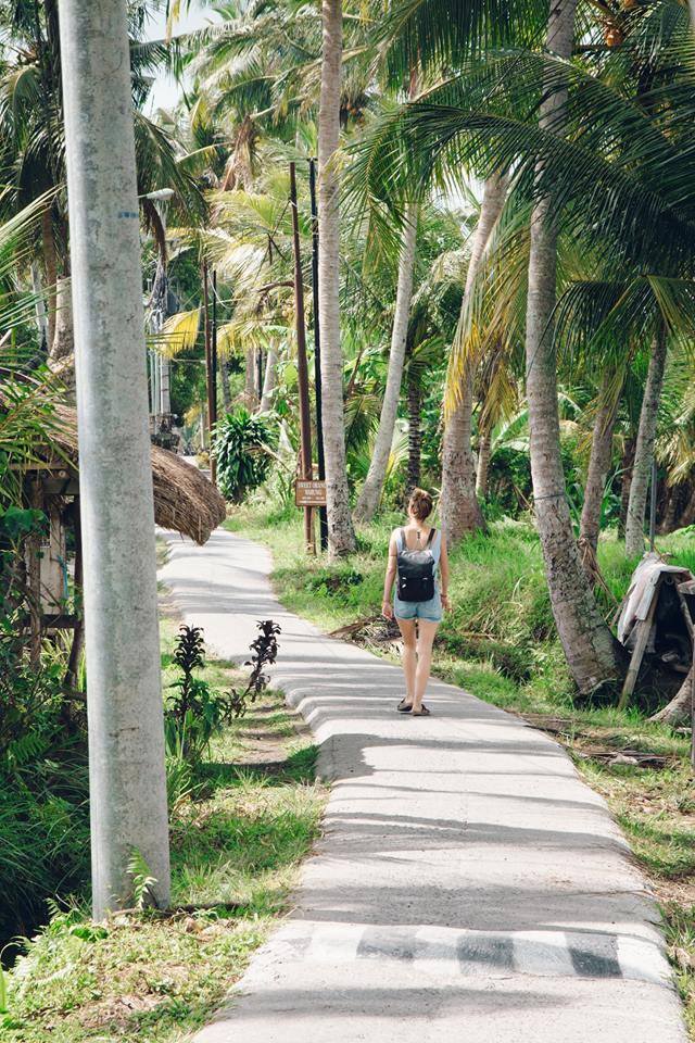 Ubud Tipps: Spaziergang in den Reisfeldern von Bali