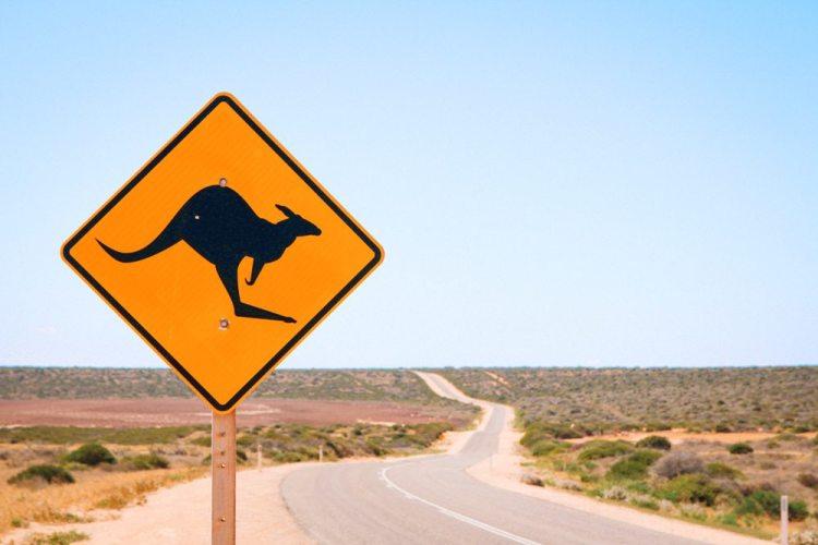 In Westaustralien sieht man oft nicht mehr als eine lange Straße durch die Wüste - gut um Emotionen zuzulassen